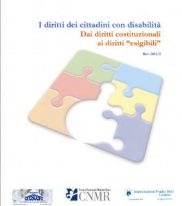 Diritti disabilità 2011_2