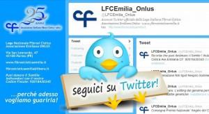 SeguiciSuTwitter