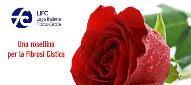 """""""ROSELLINE PER LA VITA""""  Attività di raccolta fondi per la lotta alla fibrosi cistica"""